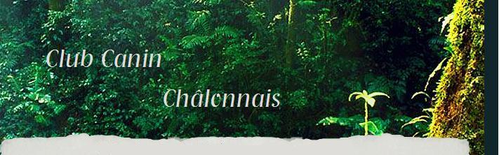 clubcaninchalonnais